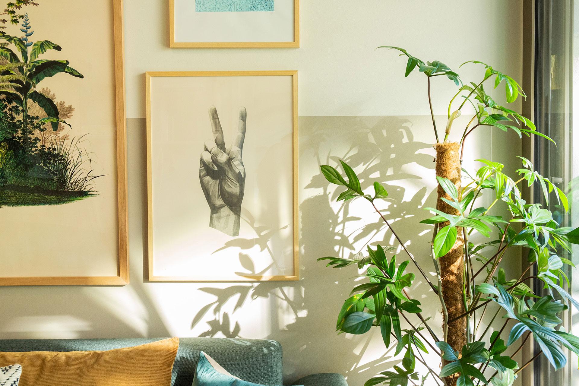 Pflanzen und Bilder